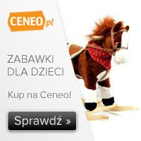 Zabawki na Ceneo.pl