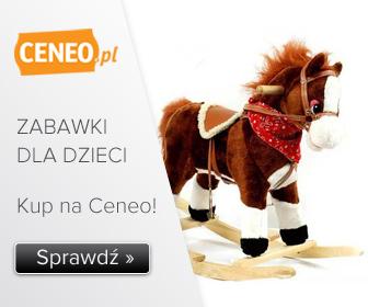 Zabawki - wybierz na Ceneo