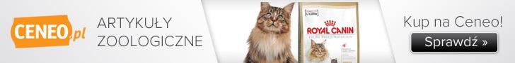 Artykuły zoologiczne - zobacz na Ceneo