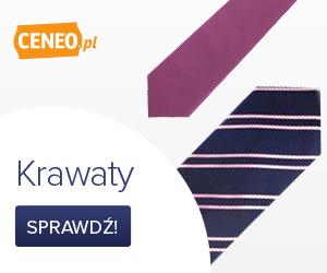 Krawaty - zobacz ceny