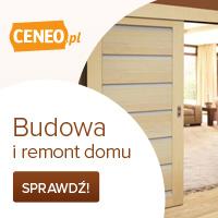Budowa i remont domu - wybierz na Ceneo