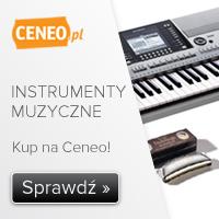 Instrumenty muzyczne - sprawdź opinie
