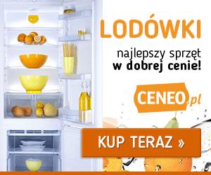 Lodówki na Ceneo.pl