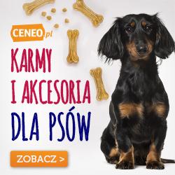 Karmy i akcesoria dla psów - porównaj na Ceneo.pl