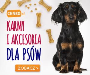 Karmy i akcesoria dla psów - sprawdź na Ceneo.pl