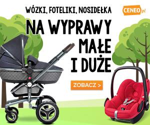 Podróż i spacer z dzieckiem - porównaj na Ceneo.pl