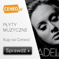 Płyty muzyczne - sprawdź na Ceneo